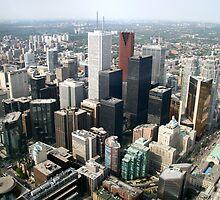 Toronto Downtown by Andris Batraks