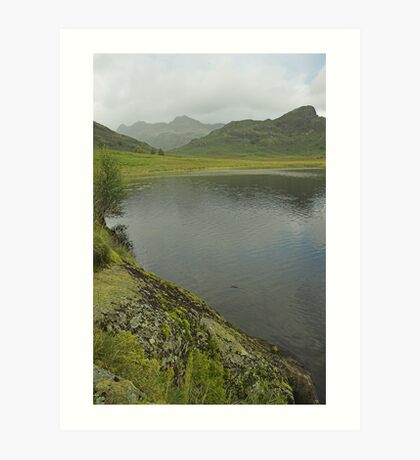 Lakeland view Art Print