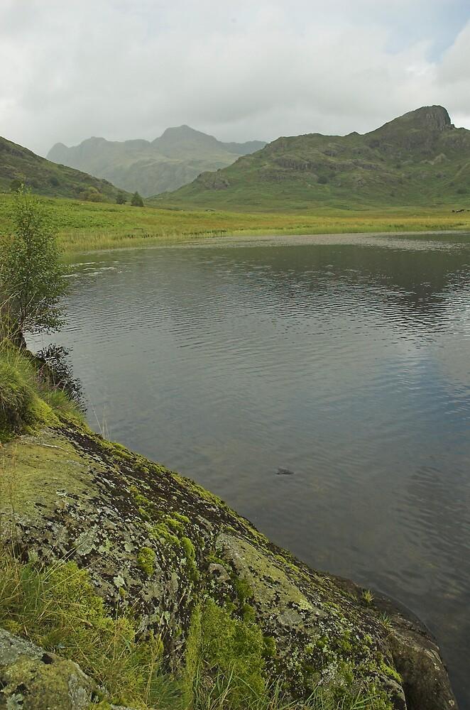 Lakeland view by Glenn Mason