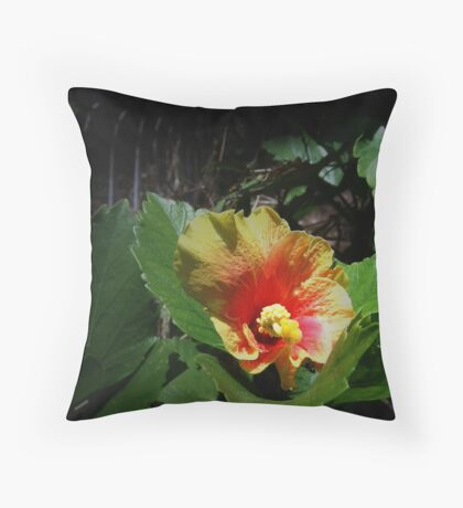 Lustrous Philippine Hibiscus Throw Pillow
