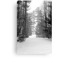 snow scene a Canvas Print