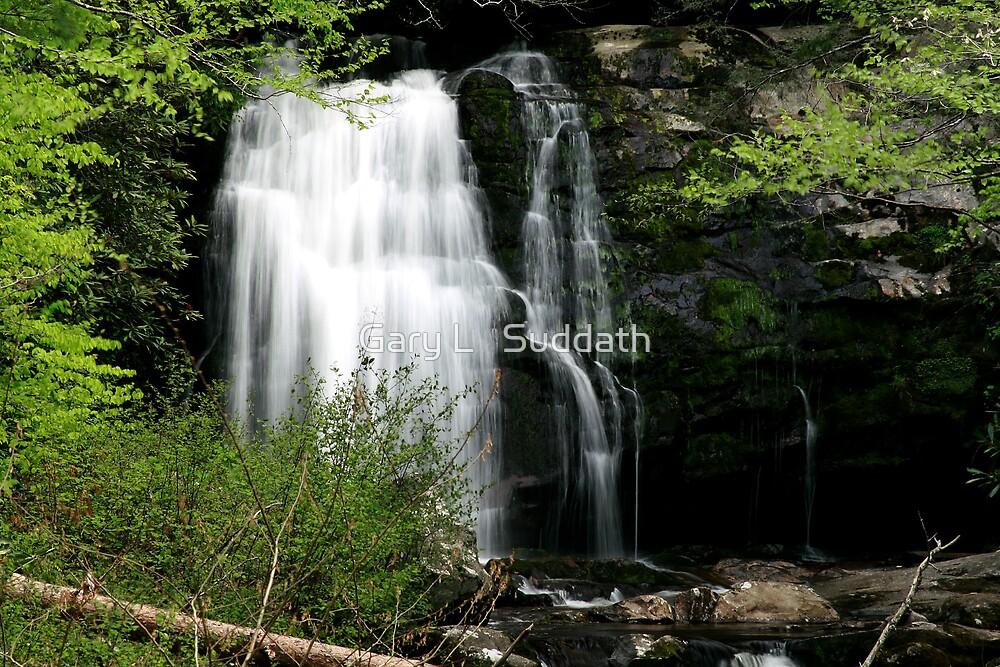 Meigs Falls by Gary L   Suddath
