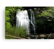 Meigs Falls Canvas Print