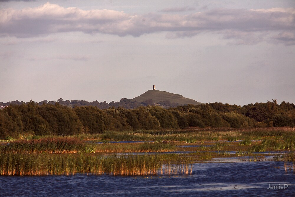 Somerset Levels by JamieP