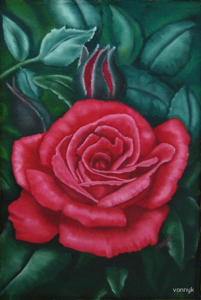 Red rose bouquet by vonnyk