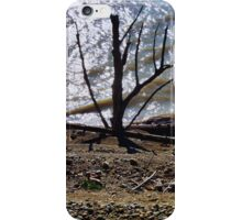 One tree revealed iPhone Case/Skin