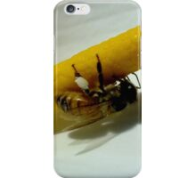 Bee in line, Toowoomba,Queensland, Australia iPhone Case/Skin