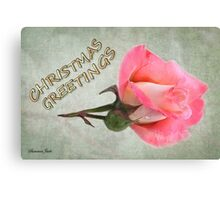 Christmas Greetings ~ A Rose Canvas Print