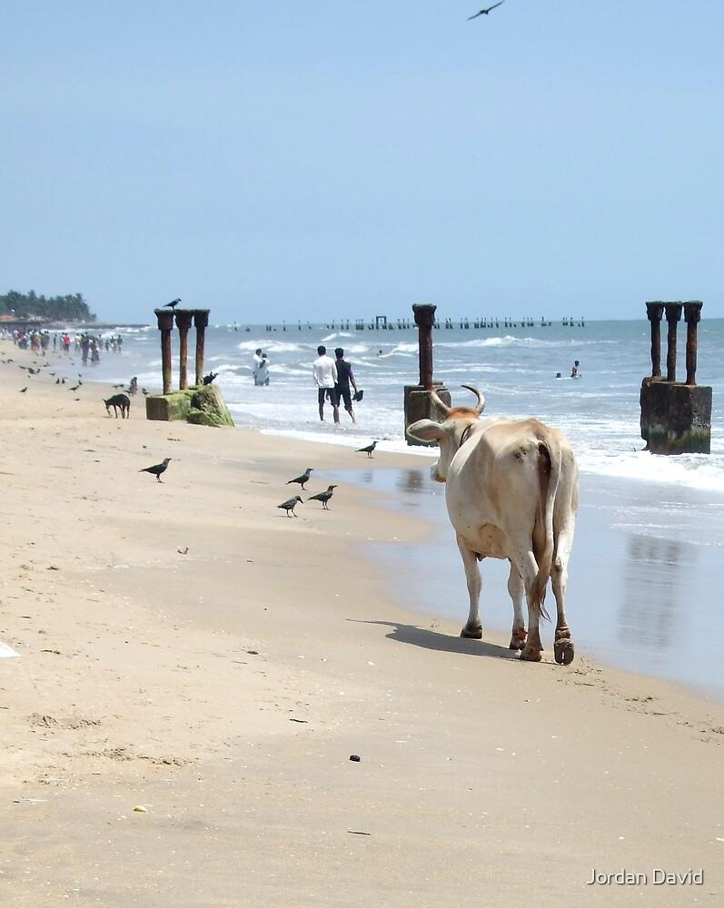 long romantic walks along the beach 2 by Jordan David
