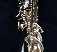 Soprano Saxophone by Neil Osborne