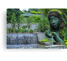 She is the giver of life and water Canvas Print