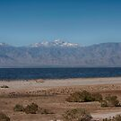 Bombay Beach by Imagery