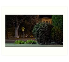 Moonee Ponds 3 Art Print