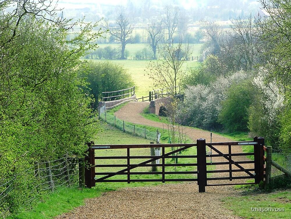 path by tmasonvoss
