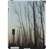 Desolate Forest iPad Case/Skin