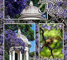 Parque Rodó by Digitalbcon
