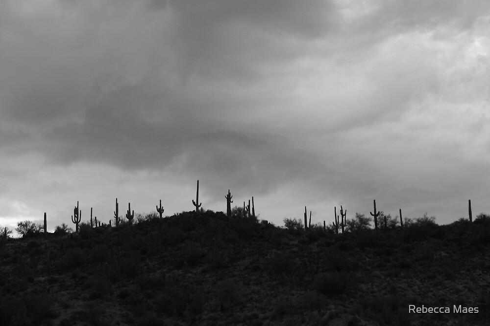 Arizona Cacti by Rebecca Jakel
