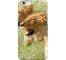 DOUBLE TROUBLE - The lionesses - Panthera leo iPhone Case/Skin