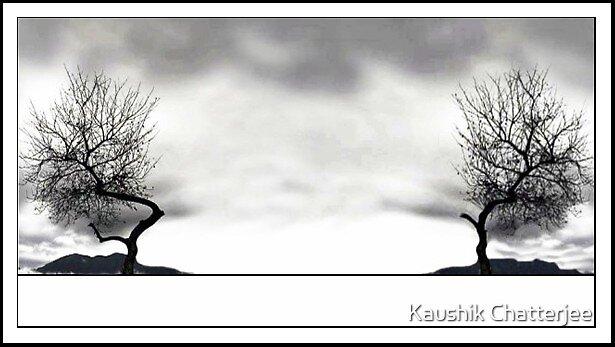 Twin Tree by Kaushik Chatterjee
