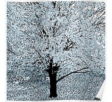 The Snow Tree Poster