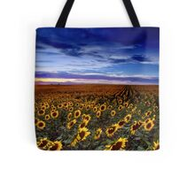 At Day's End Tote Bag