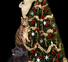☃ MM JUST ABOUT DONE ADDING THE STAR THE FINAL TOUCH ☃ by ✿✿ Bonita ✿✿ ђєℓℓσ