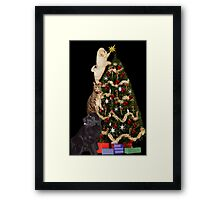 ☃ MM JUST ABOUT DONE ADDING THE STAR THE FINAL TOUCH ☃ Framed Print