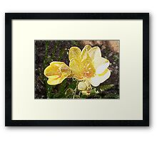 Freesia Woodcut Framed Print