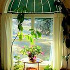 My Friends Sue's Window by Diane Arndt