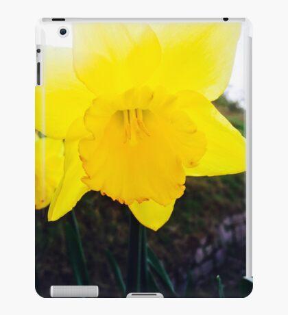 Dancing Daffodils  iPad Case/Skin