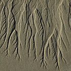 Patterns in the Sand by catdot