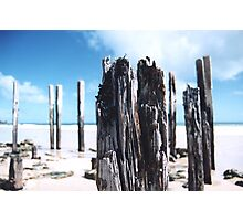 Port Willunga Jetty Posts Photographic Print