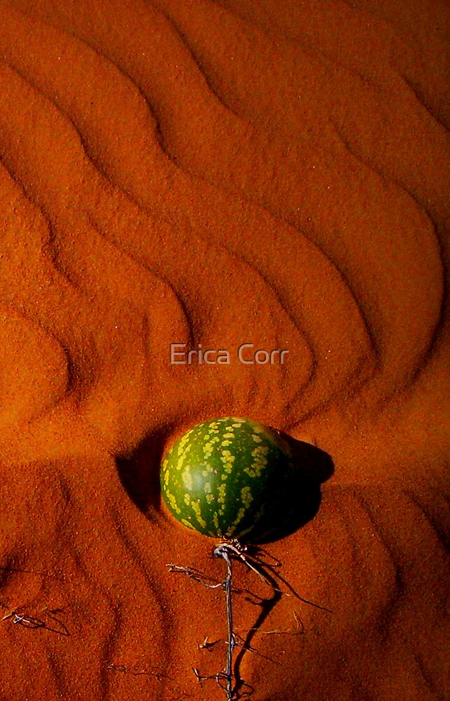 Melon in the Sand by Erica Corr
