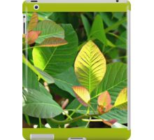 Backlit Leaves - Hyde Hall iPad Case/Skin