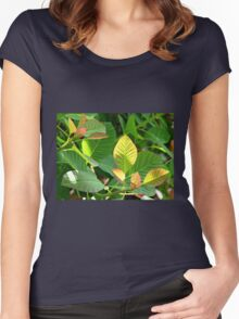 Backlit Leaves - Hyde Hall Women's Fitted Scoop T-Shirt