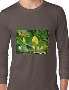Backlit Leaves - Hyde Hall Long Sleeve T-Shirt