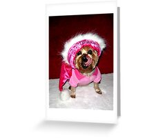 Zoe---My Yorkie Greeting Card
