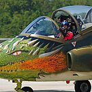 Dragon Nose Art by Andreas Mueller
