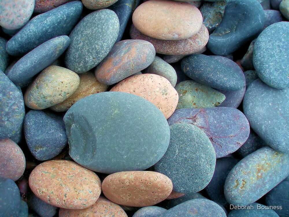 Sea Worn Pebbles by Deborah  Bowness