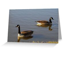 Mirror Images Greeting Card