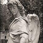 Broken Angel by Tim Gourley