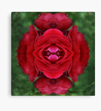 Morphed - Red Roses Canvas Print