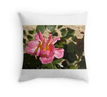 Brushed Pink Rose Throw Pillow