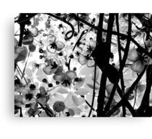The Chocolate Vine Canvas Print