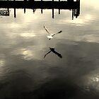 On Golden Pond by Caroline Scott