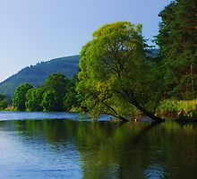 Tweed Reflections by Craig Maguire