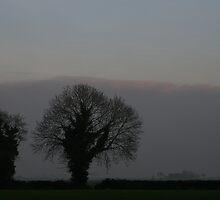 Billingborough Fen by Dave Pearson