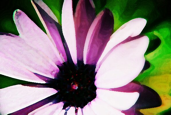 Painted flower by moseszap