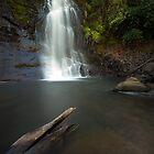 Nihotupu Falls Waitakere Ranges by earlcooknz
