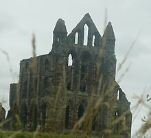 Whitby Abbey 4 by Wrigglefish